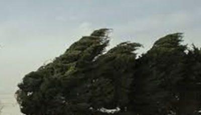 باد شدید در 10 استان از امشب وزش باد شدید, وضعیت جوی کشور
