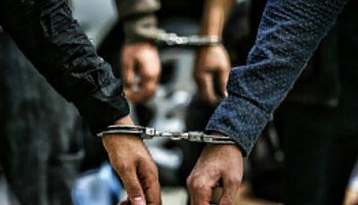 دستگیری حیوان آزار در شهریار شهریار, دستگیری فرد حیوان آزار