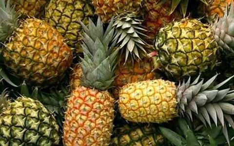 قیمت گرانترین میوه داخلی و وارداتی اعلام شد
