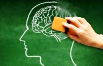 ۱۲ اقدام برای کاهش خطر ابتلا به زوال عقل زوال عقل, پژوهش