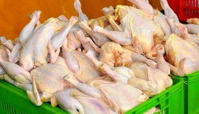 قیمت گوشت مرغ از 20 هزار تومان عبور کرد قیمت گوشت مرغ