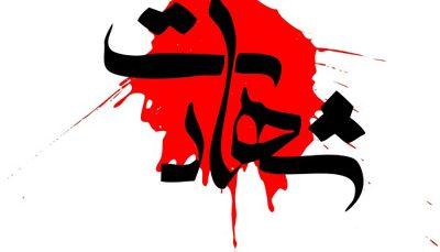 محمد محمدی در حین امر به معروف به شهادت رسید
