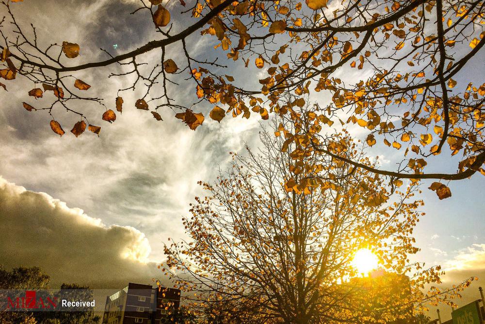2802064 813 پاییز رنگی, تصاویر