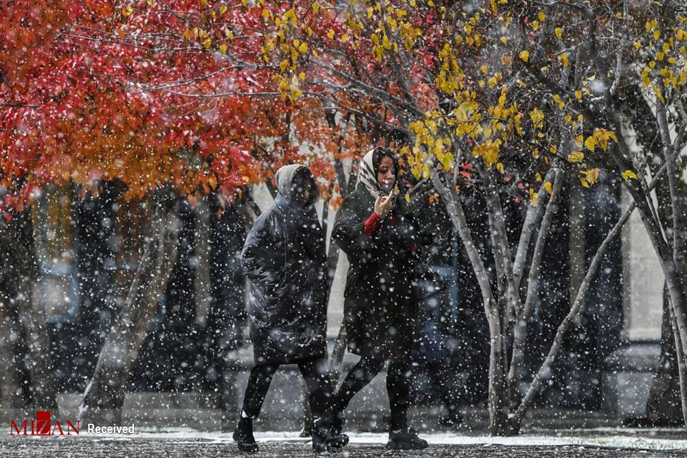 2802068 867 پاییز رنگی, تصاویر