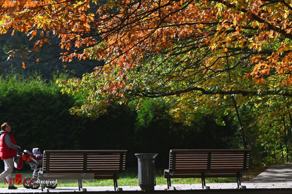 2802070 322 پاییز رنگی, تصاویر