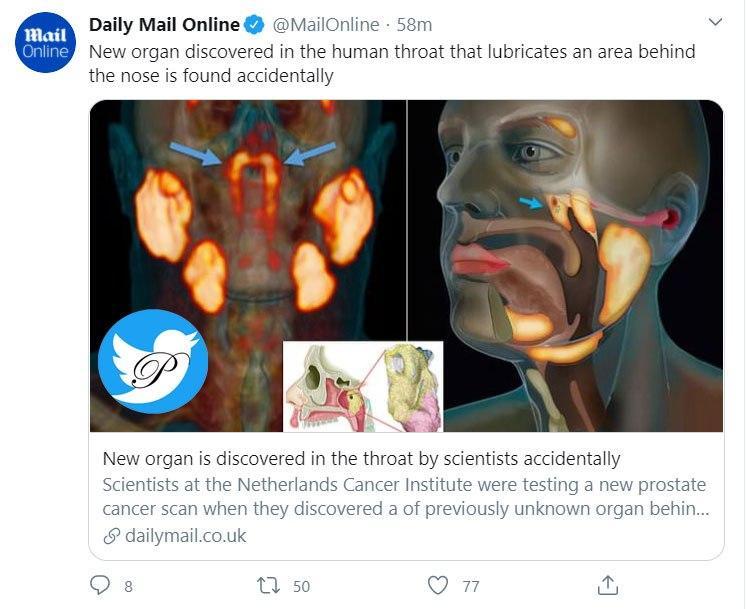 کشف عضو جدیدی در بدن به طور تصادفی