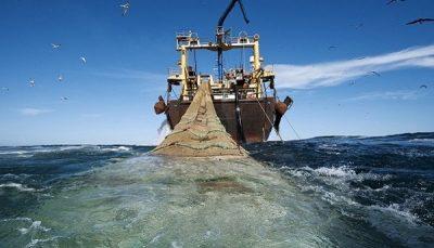توقیف ۲ کشتی متخلف صید ترال و کشف هزار و ۵۰۰ کیلو انواع آبزیان
