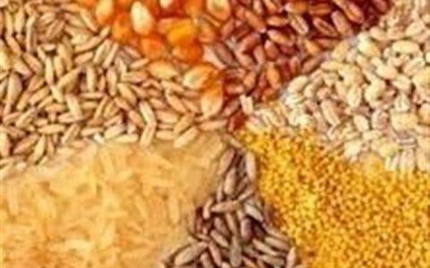 مخالفت رئیس جمهور با توافق دو وزیر برای واگذاری تنظیم بازار به وزارت جهاد کشاورزی