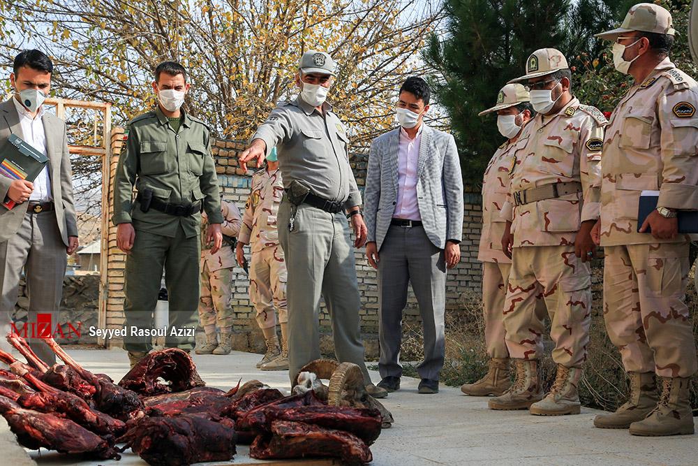 بازداشت شکارچی غیرمجاز در کلات