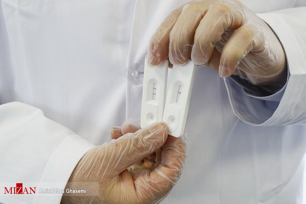 2871961 467 تستهای تشخیص سریع کرونا, تولید کیتهای داخلی