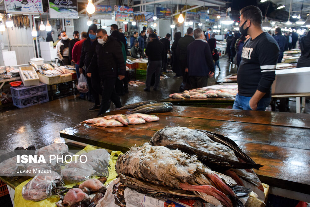 61789303 بازار ماهی فریدونکنار