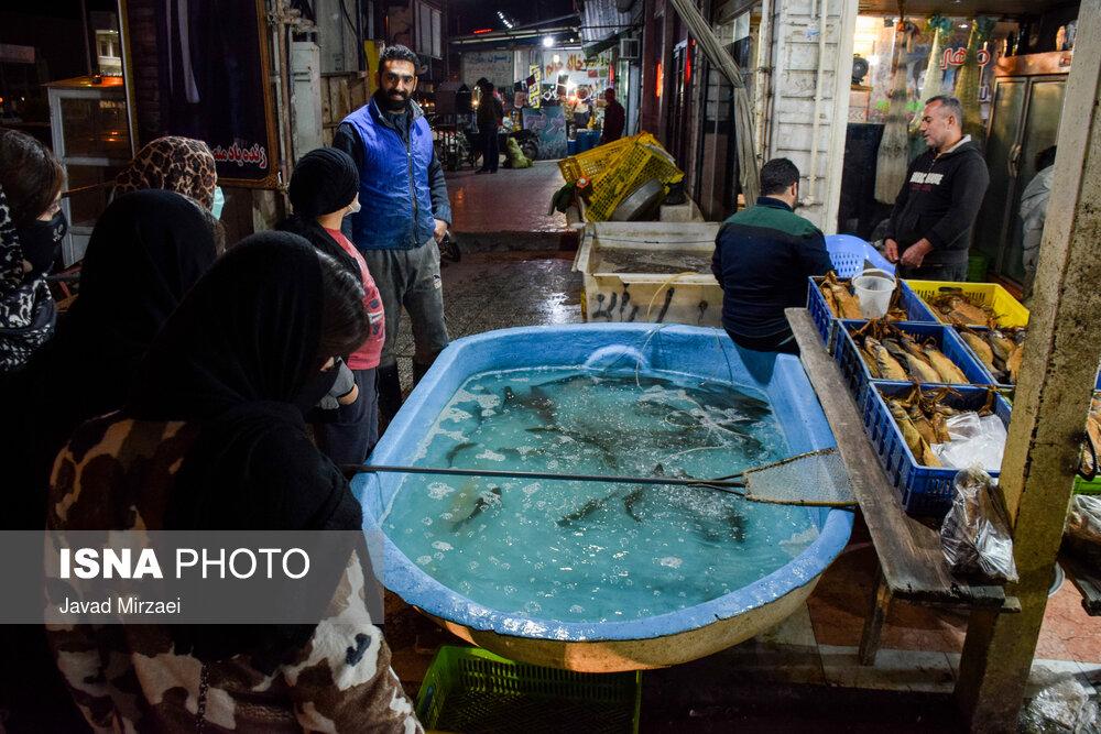 61789308 بازار ماهی فریدونکنار