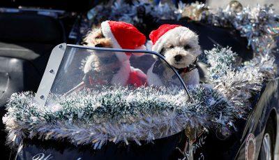 بابانوئلها در رژه موتوری رژه کریسمس, بابانوئل