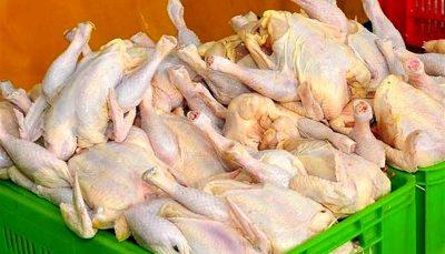 بازار مرغ در ثبات نسبی بازار مرغ, قیمت مرغ