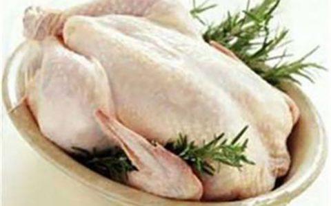 برای سلامت خانواده، مرغ کمتر از 1.8 کیلوگرم مصرف کنید مرغ