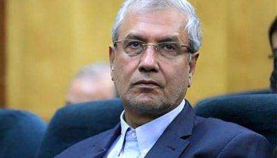 سخنگوی دولت هدف از ترور شهید فخریزاده را تشریح کرد