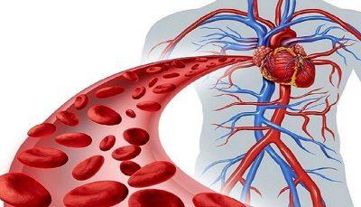 عوارض هولناک گردش خون نامناسب در بدن گردش خون, مکملهای غذایی