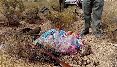 فرار از مامور محیط زیست قرق شکار, شکارچی غیرمجاز