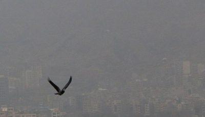 کیفیت هوای تهران قرمز شد کیفیت هوای تهران