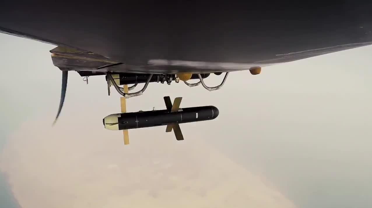 13990915170828948217541110 جانور قندهار, نیروی هوافضای سپاه پاسداران, پهپاد آمریکایی RQ۱۷۰
