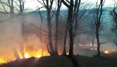 آتشسوزی اراضی جنگلی جمهوری آذربایجان در مرز آستارا ادامه دارد