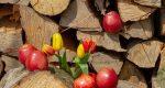 میوهای که در درمان سردرد معجزه میکند سردرد, درمان سردرد