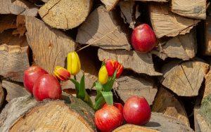 میوهای که در درمان سردرد معجزه میکند