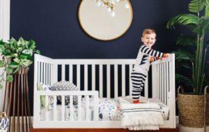 ۱۵ گیاه مناسب اتاق نوزاد و کودک سبک زندگی