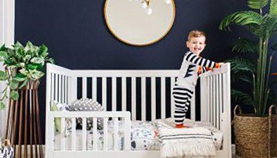 ۱۵ گیاه مناسب اتاق نوزاد و کودک اتاق نوزاد و کودک, گیاه