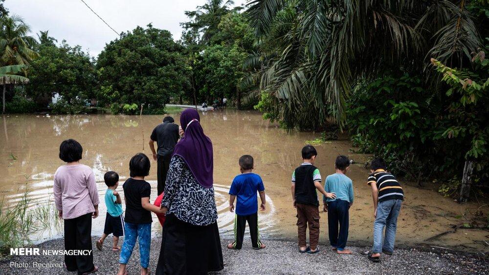 3651306 سیل, مالزی
