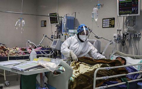 دکتر مردانی: مرگ و میر کرونا اواسط اسفند افزایش مییابد