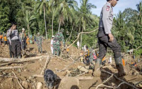 زمین در اندونزی ۵ تن کشته و ۷۰ تن ناپدید شدند رانش زمین در اندونزی/ ۵ تن کشته و ۷۰ تن ناپدید شدند