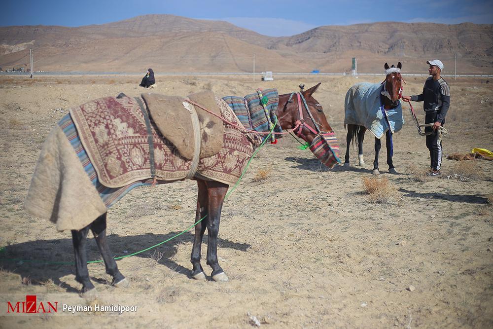 مسابقات سوارکاری در بجنورد