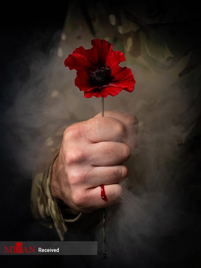 2991165 290 مسابقه عکاسی ارتش انگلیس ۲۰۲۰