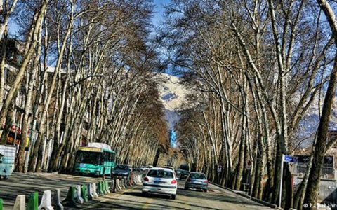 شهردار تهران: خیابان ولیعصر بزودی ثبت جهانی می شود