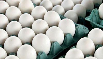 قیمت تخم مرغ در میادین میوه و تره بار اعلام شد