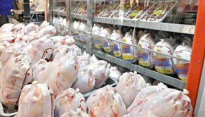 مجوز دولت برای واردات مرغ