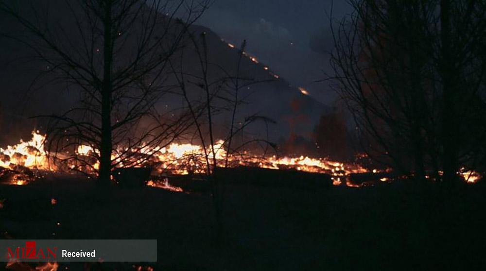 آتش سوزی جنگلهای آرژانتین