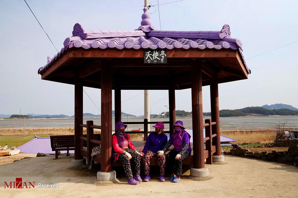 جزیره بنفش - کره جنوبی