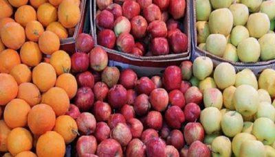 توزیع سیب و پرتقال نوروزی در تهران آغاز شد