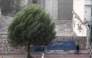 رگبار، رعد و برق و وزش باد شدید در استان تهران