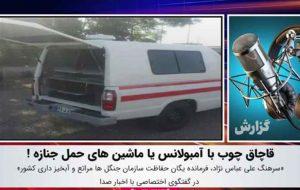 قاچاق چوب با آمبولانس یا ماشینهای حمل جنازه! / فیلم