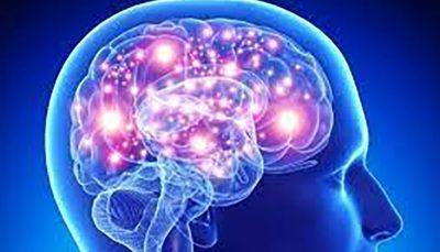 کشف ۱۳ ژن که در بروز آلزایمر نقش دارند