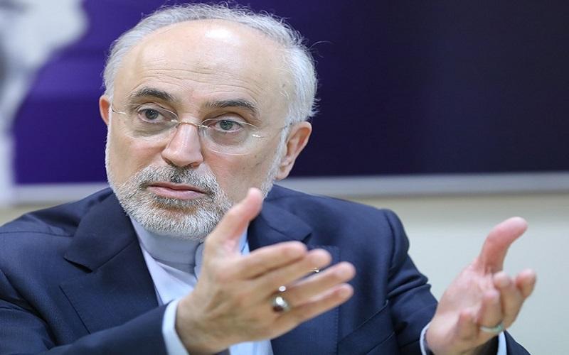 صالحی درباره حادثه نطنز: حرکت تروریستی بود