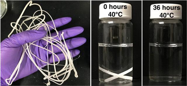 پلاستیک یکبار مصرف خودخورنده، ناجی بشر میشود
