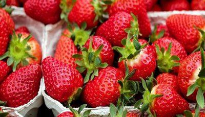 میوهای که باعث کاهش ابتلا به سرطان میشود