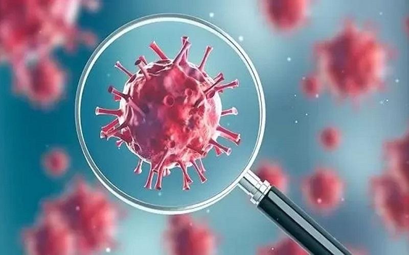 سیا به کاخ سفید اعلام کرد که داده هایی در مورد منشأ ویروس کرونا دارند