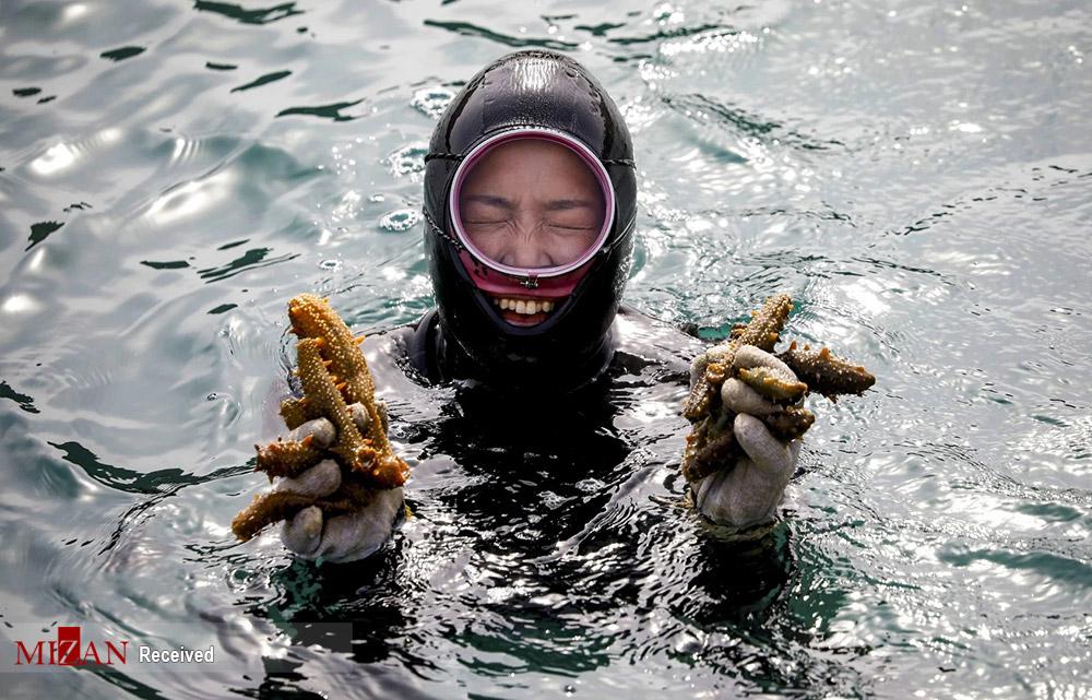 زنان دریا - کره جنوبی