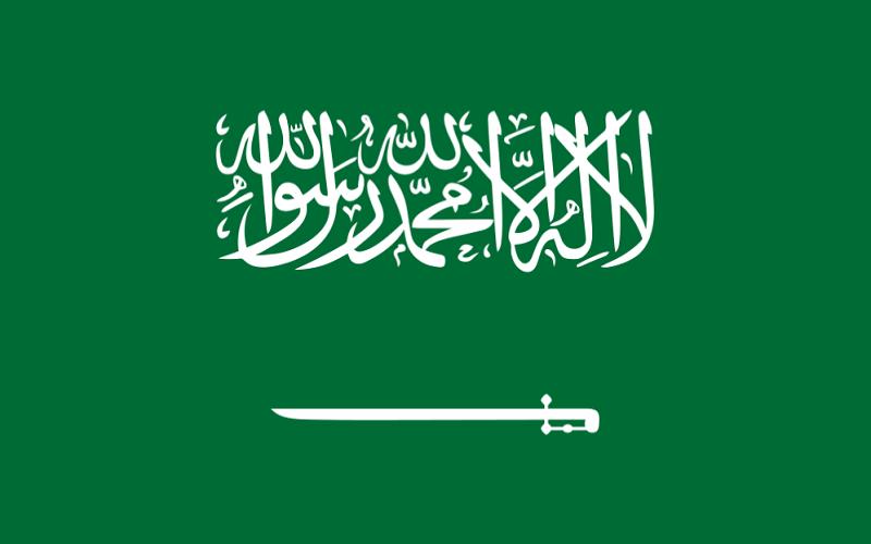 یک زن به عنوان معاون وزیر بازرگانی عربستان انتخاب شد