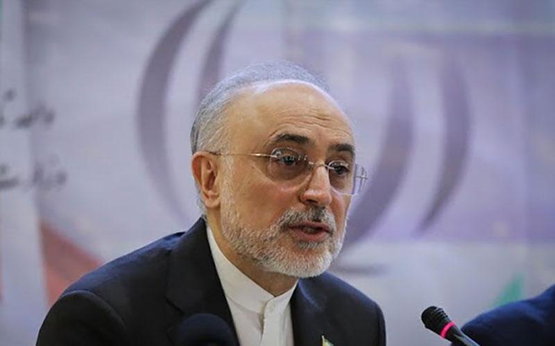 رئیس سازمان انرژی اتمی: مسائل مالی دلیل عمده عدم دستیابی به اهداف تولید برق هستهای بوده است